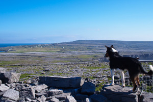 Overlooking his Kingdom of Inishmore